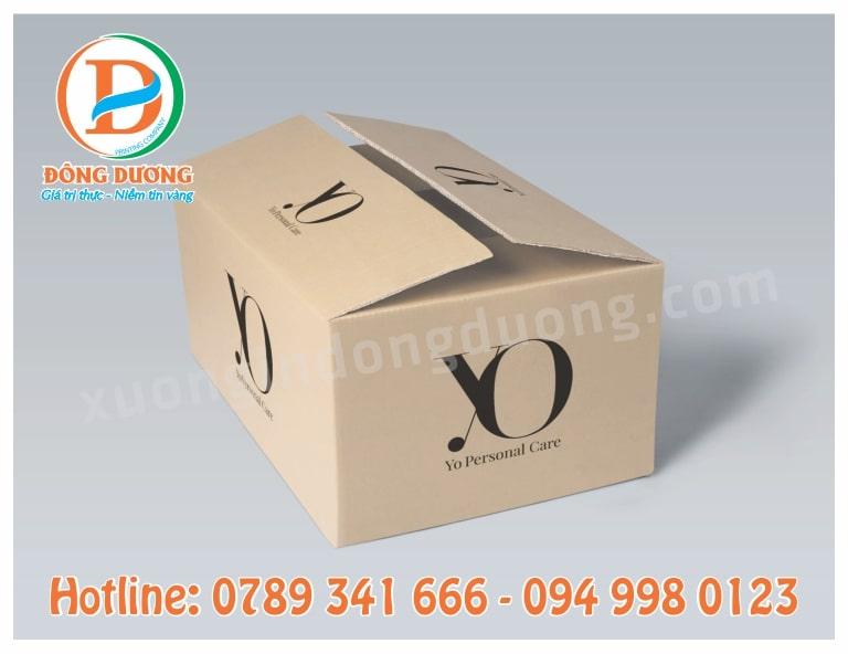 mua thung carton tai Bac Ninh